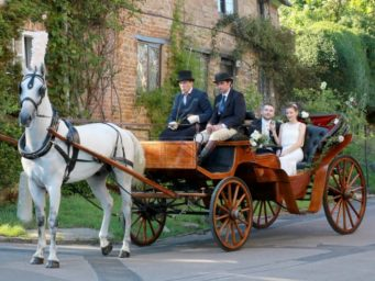 Horse drawn wedding carriage with a bride and groom