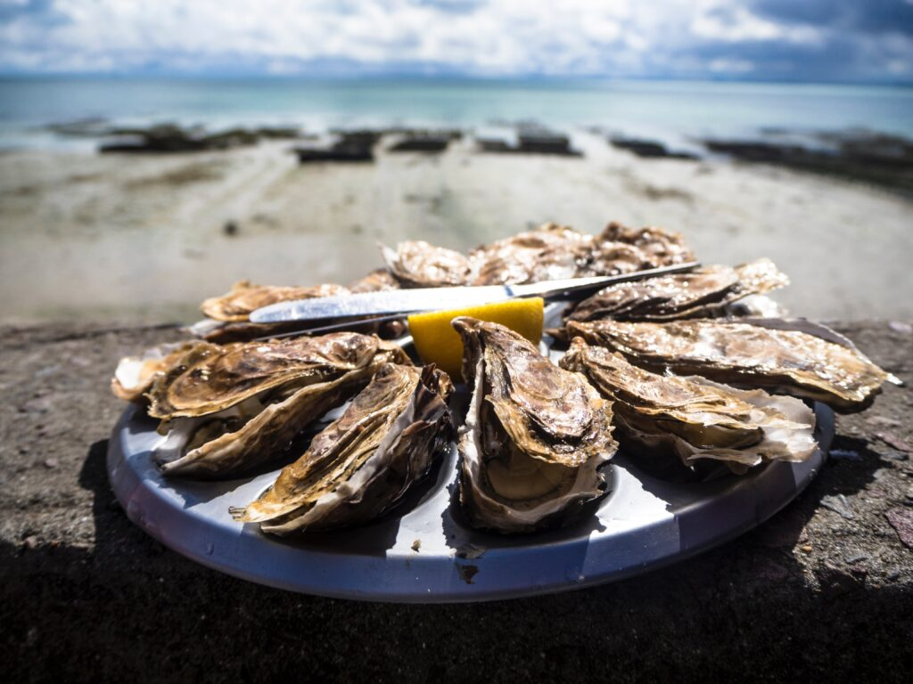 Alternative wedding catering - oyster bar or oyster shucker for your wedding catering