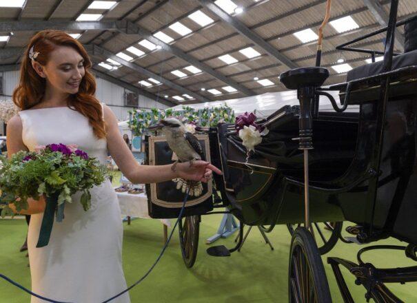 Premier wedding fair in Cornwall, hosted by Art of Weddings